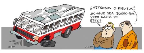 burro bus