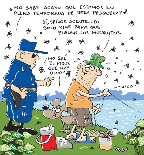 pique de mosquitos