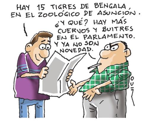 tigres de bengala 766