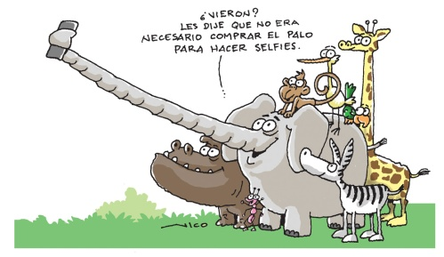 palp pa selfies