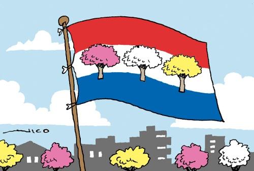 bandera tajy