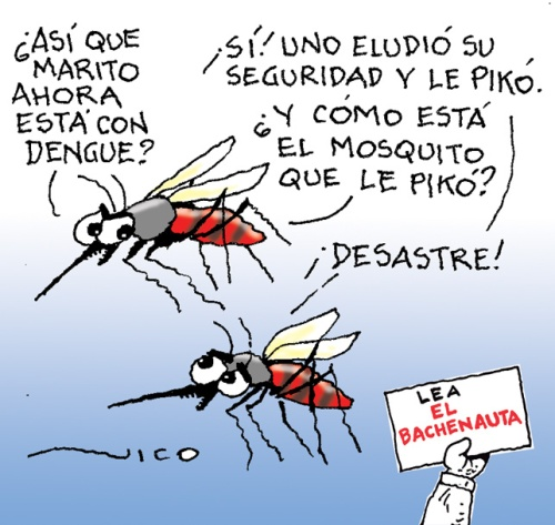 marito con dengue